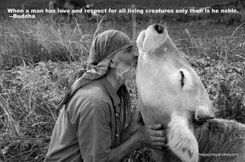 Image of: Quotes Until We Have The Courage To Recognize Cruelty For What It Is Whether Its Victim Is Human Or Animal We Cannot Expect Things To Be Much Better In This The Eugene Veg Education Network Veg Facts Even The Eugene Veg Education Network Vegan