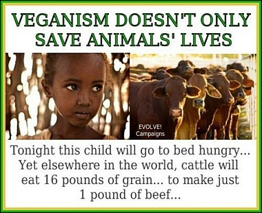 the benefits of veganism to the human body and our environment Explore the pros and cons of the debate veganism is the best lifestyle for the planet, animals, and human health  our bodies, creating a great environment for .